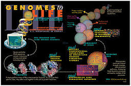 SystemsBiology